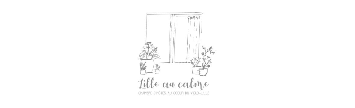 Lille au calme chambre d 39 h te au coeur du vieux lille - Chambre d hote vieux lille ...